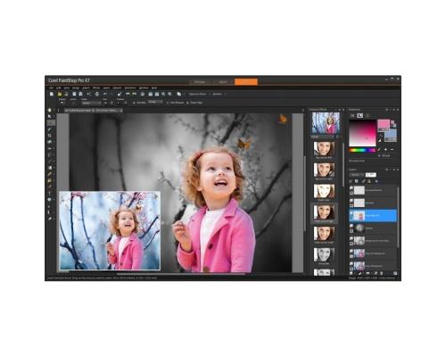 Corel PaintShop Pro X7 Ultimate (PC) Retail