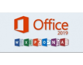 Microsoft Office Professional Plus 2019 32/64 Bit 1 PC Key MSOPP19MR