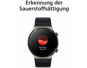Huawei Watch GT 2 Pro 47mm (Nebula Gray)