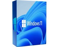 Windows 11 Professional 32/64 bit ESD FQC-0965