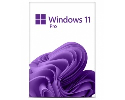 Microsoft Windows 11 Professional (2 Users)
